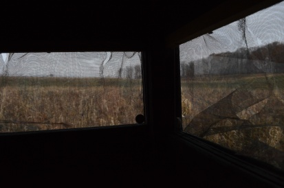 The view from the blind
