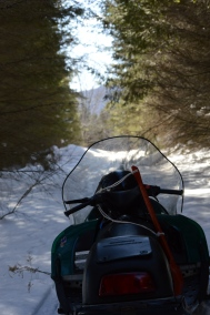 Sledding Thursday Trail
