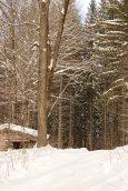 Unbroken Trail