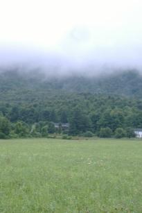 Ryan's Hill